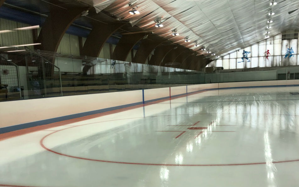 FMC Ice Sports - REALice